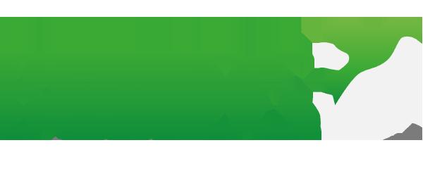 BVNDS